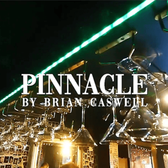 Pinnacle by Brian Caswell