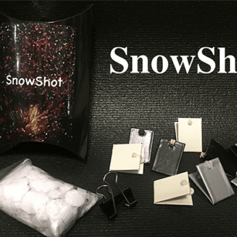 SnowShot (10 ct.) by Victor Voitko