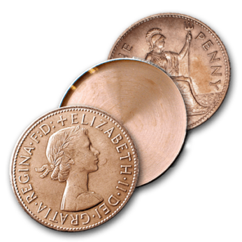 Expanded English Penny Shell Heads