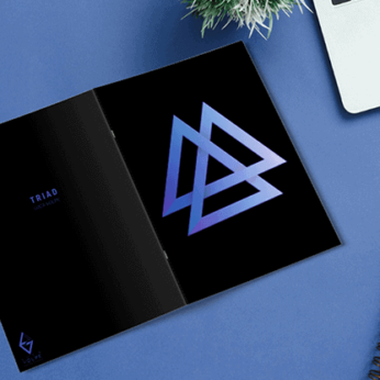 Triad by Luca Volpe - Book