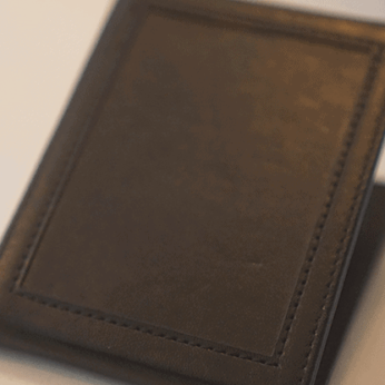 Chameleon Skin Wallet by Jim Steinmeyer