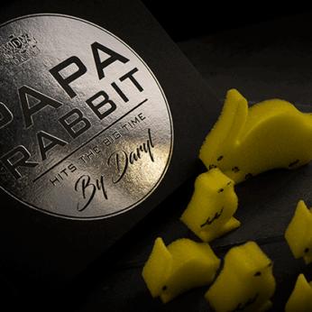 Papa Rabbit Hits The Big Time by DARYL